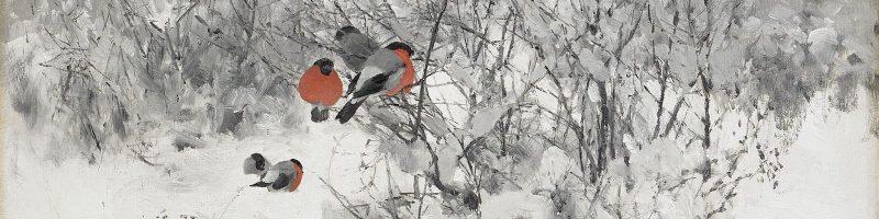 winter; snow; birds; finches